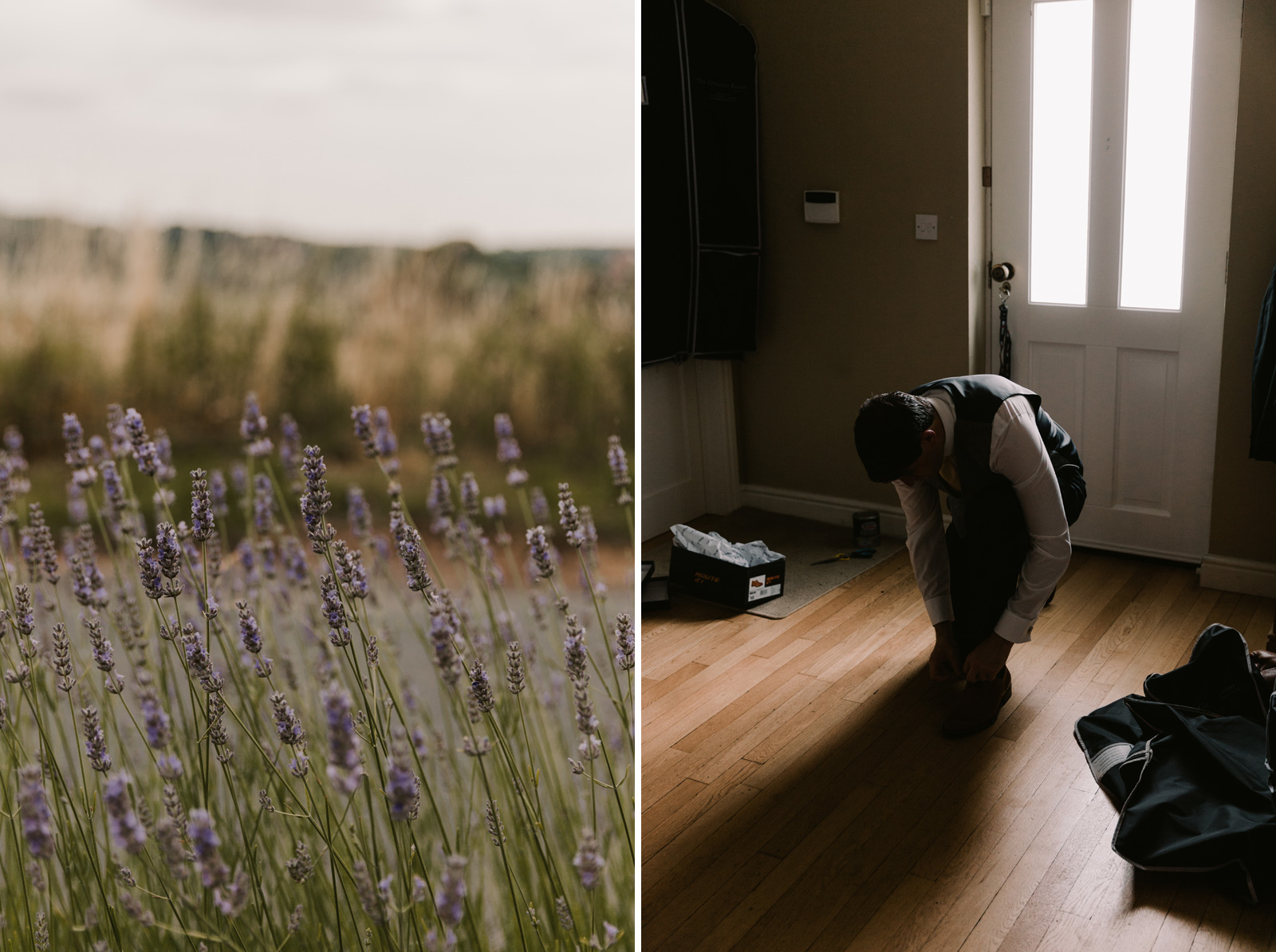 Split shot of a lavender field and groom getting ready